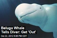 Beluga Whale Speaks ... English?