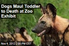 Dogs Maul Toddler to Death at Zoo Exhibit
