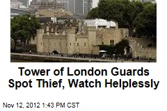 Tower of London Guards Spot Thief, Watch Helplessly