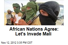 African Nations Agree: Let's Invade Mali
