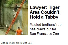 Lawyer: Tiger Area Couldn't Hold a Tabby