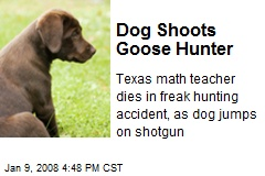 Dog Shoots Goose Hunter