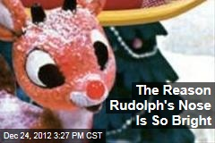 Study Reveals Why Rudolph's Nose Is So Bright