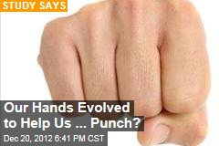Our Hands Evolved to Help Us ... Punch?