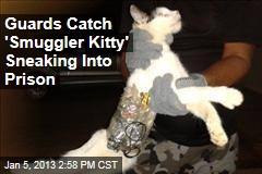 Guards Catch &amp;#39;Smuggler Kitty&amp;#39; Sneaking Into Prison