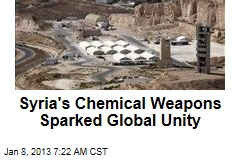 Syria's Chemical Weapons Sparked Global Unity