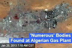 &amp;#39;Numerous&amp;#39; Bodies Found at Algerian Gas Plant