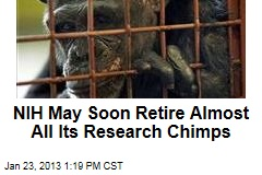NIH May Soon Retire Almost All Its Research Chimps