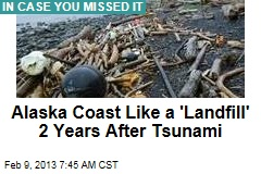 Alaska Coast Like a &amp;#39;Landfill&amp;#39; 2 Years After Tsunami