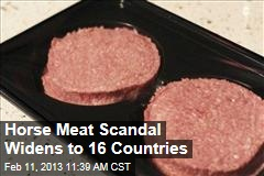 Horse Meat Scandal Widens to 16 Countries