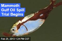 Mammoth Gulf Oil Spill Trial Begins