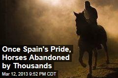 Once Spain&amp;#39;s Pride, Horses Abandoned by Thousands