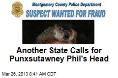Another State Calls for Punxsutawney Phil&amp;#39;s Head