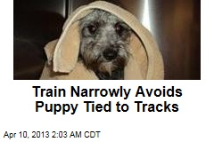 Train Narrowly Avoids Puppy Tied to Tracks