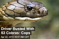 Vietnam Driver Busted With 53 Cobras: Cops