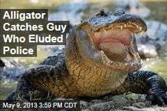 Alligator Catches Guy Who Eluded Police