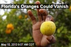 Florida's Oranges Could Vanish