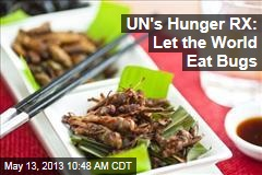 UN&amp;#39;s Hunger RX: Let the World Eat Bugs