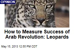 How to Measure Success of Arab Revolution: Leopards