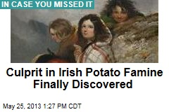 Culprit in Irish Potato Famine Finally Discovered