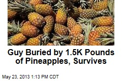 Guy Buried by 1.5K Pounds of Pineapples, Survives