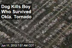 Dog Kills Boy Who Survived Tornado