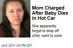 Mom Charged After Baby Dies in Hot Car