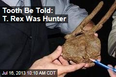 Tooth Be Told: T. Rex Was Hunter