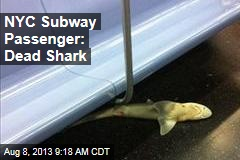 NYC Subway Passenger: Dead Shark