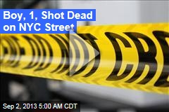 Boy, 1, Shot Dead on NYC Street