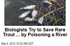 Biologists Try to Save Rare Trout ... By Poisoning a River