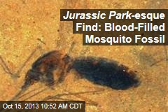 Jurassic Park -Esque Find: Blood-Filled Mosquito Fossil