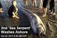 2nd 'Sea Serpent' Washes Ashore