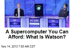 A Supercomputer You Can Afford: What Is Watson?