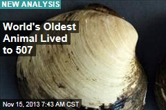 Scientists Cracked Open 507-Year-Old Clam