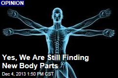 Yes, We Are Still Finding New Body Parts