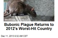 Bubonic Plague Returns to 2012's Worst-Hit Country