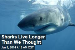 Sharks Live Longer Than We Thought