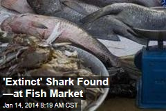 'Extinct' Shark Found ... at Fish Market