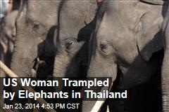 US Woman Trampled by Elephants in Thailand