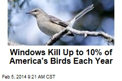 Windows kill up to 10% of America's birds each year