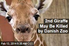 2nd Giraffe May Be Killed by Danish Zoo