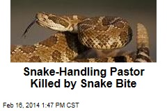 Snake-Handling Pastor Killed by Snake Bite