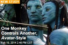 One Monkey Controls Another, Avatar -Style