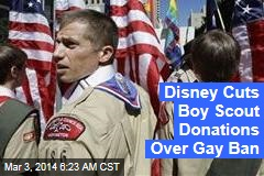 Disney Cuts Boy Scout Donations Over Gay Ban