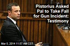 Pistorius Asked Pal to Take Fall for Gun Incident: Testimony