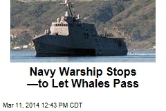 Navy Warship Stops —to Let Whales Pass