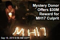 Mystery Donor Offers $30M Reward for MH17 Culprit