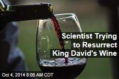Scientist Trying to Resurrect King David's Wine