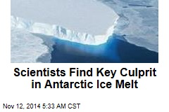 Scientists Find Key Culprit in Antarctic Ice Melt